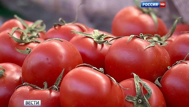 """Турция не согласна с российской формулой """"томаты в обмен на мясо"""""""