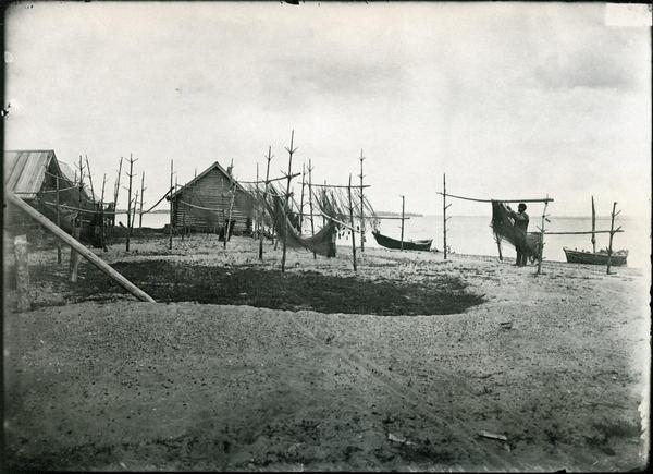 Поволжье 1894-1904
