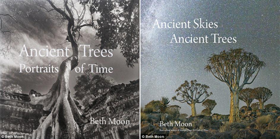 Самые старые деревья