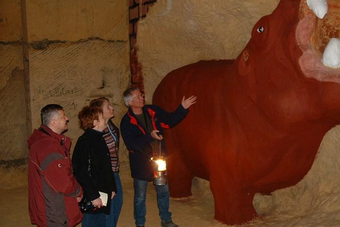 Пещеры Маастрихта: бегемот.