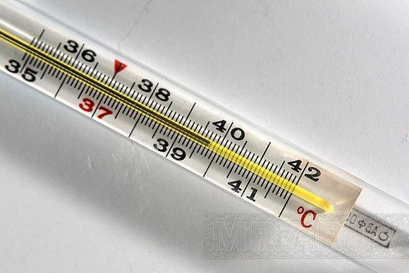 Как и зачем поднимается температура?