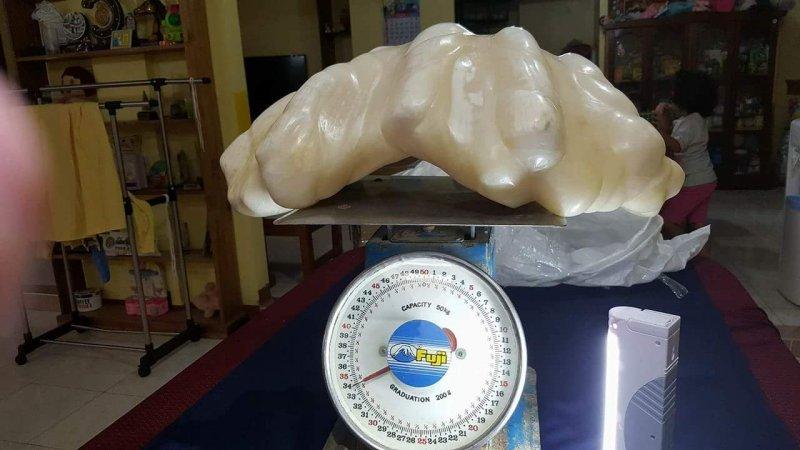 Рыбак нашел 34-килограммовую жемчужину стоимостью 100 миллионов долларов и 10 лет хранил её под кроватью