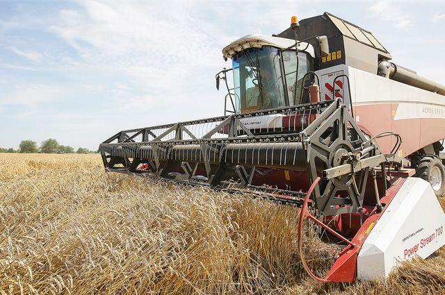 Путин анонсировал рекордный сельскохозяйственный урожай в 2017 году