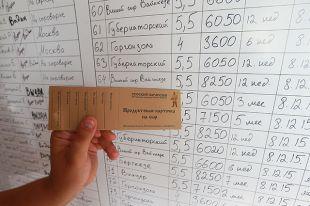 В России появятся продовольственные карточки?