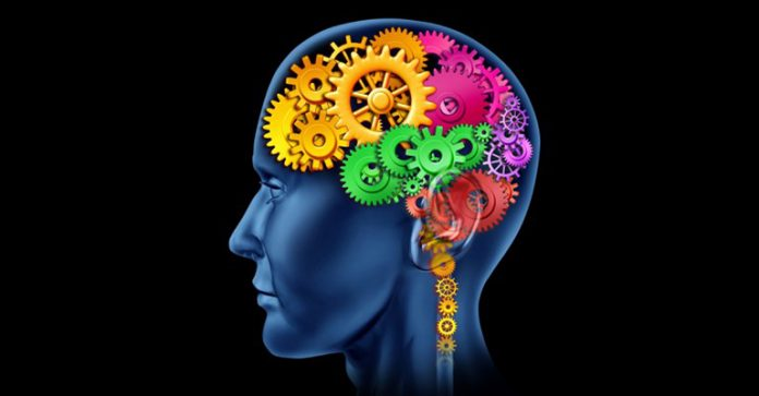 Как тренировать свой мозг, чтобы избавиться от избытка мыслей