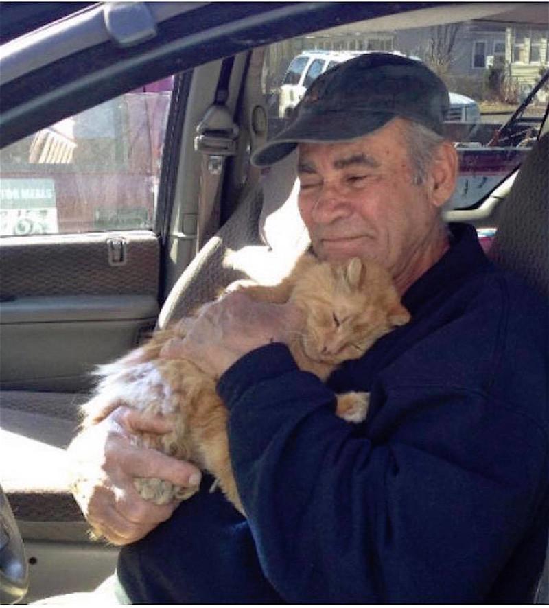 Кошачий бог из Коннектикута благотворительность, добрые люди, зоозащита, коты, кошки, помощь бездомным животным, сша