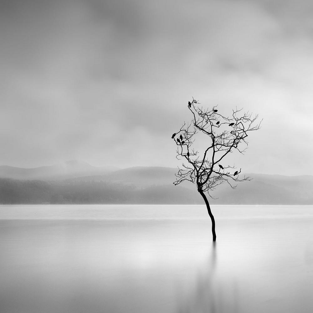 Чёрно-белые пейзажи, уходящие за пределы реальности. Фотограф Джордж Дигалакис 14