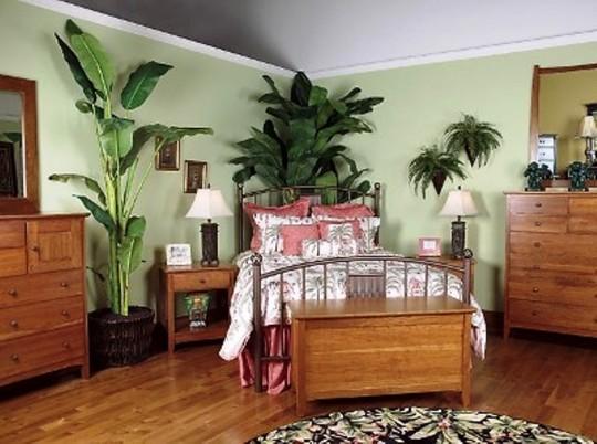 Комнатные цветы в интерьере спальни 77