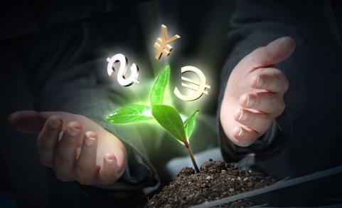 Как привлечь деньги с помощью специй и трав?