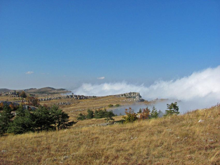 Туман на Демерджи-яйле