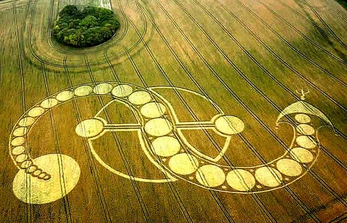 Загадочные рисунки на полях.