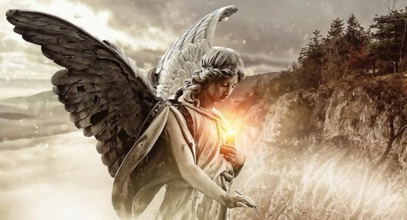 Полный пи ...дец)) «Депутаты - это такой переходный вид от человека к ангелу»