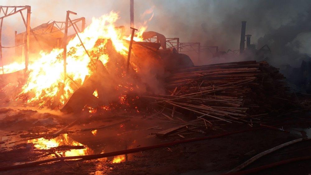В Хабаровском крае в крупном пожаре заживо сгорела женщина