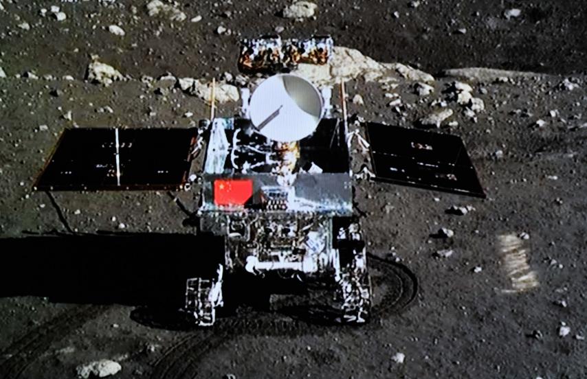 На Луне взошли первые ростки китайского хлопка