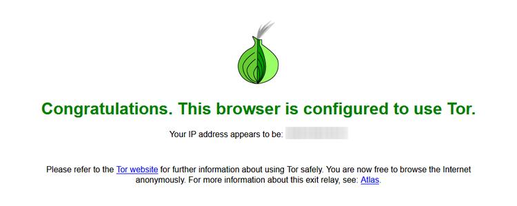 Тор браузер – гарантия анонимности в сети Интернет