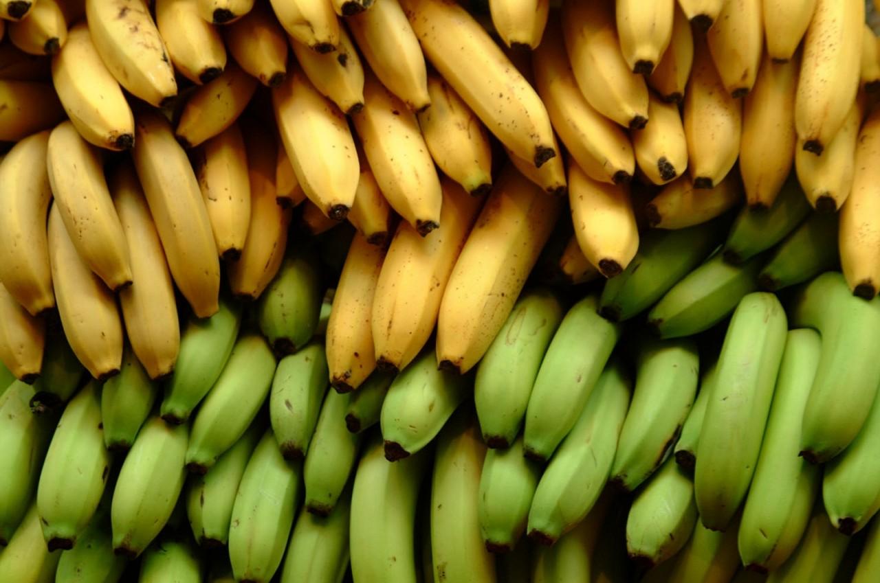 Какие бананы полезнее: зелёные или жёлтые перезрелые?