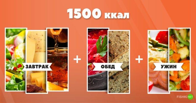 Как выглядят 1500 Ккал в день? 1500 ккал, блюда, как сбросит вес, питание, похудение, рацион, снижение веса