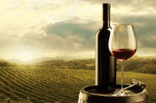 Что такое вино с защищённым географическим указанием?