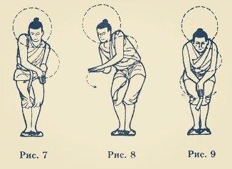 Плывущий дракон: упражнение, которое укрепит позвоночник и улучшит работу почек