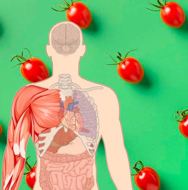 Кому нельзя употреблять помидоры