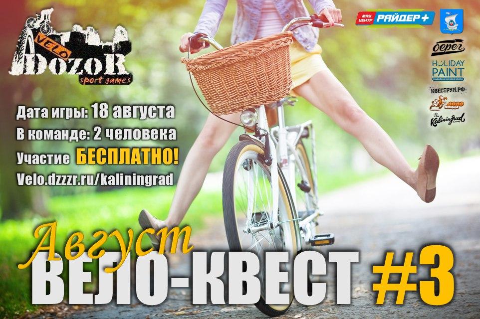 Бесплатный велоквест пройдет в Калининграде