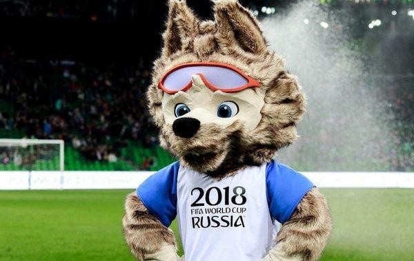 Опубликованы требования футбольных сборных-участниц ЧМ-2018 в России