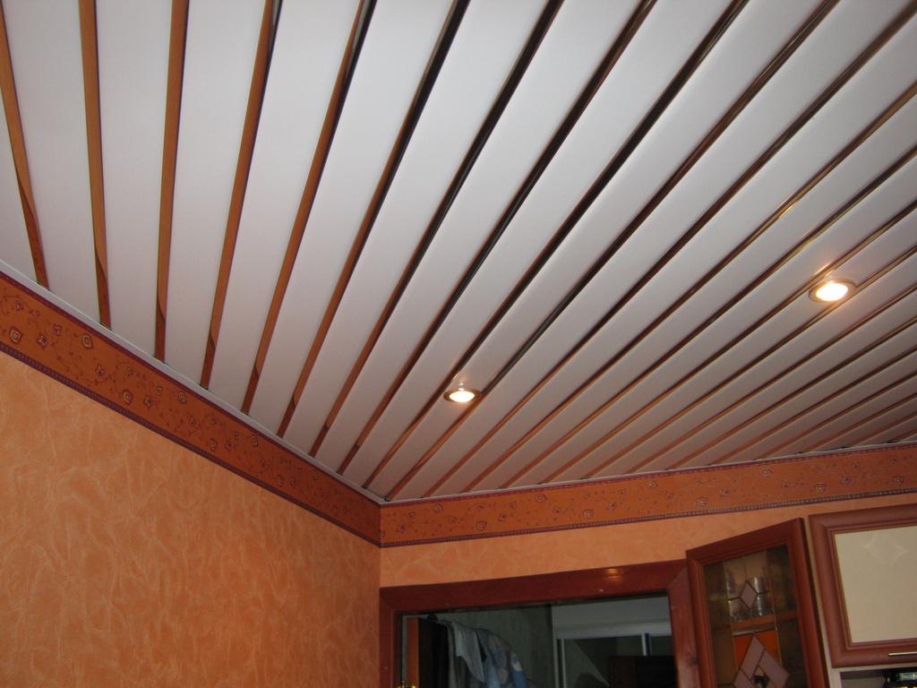 Фото дизайн потолков из пластиковых панелей на кухне