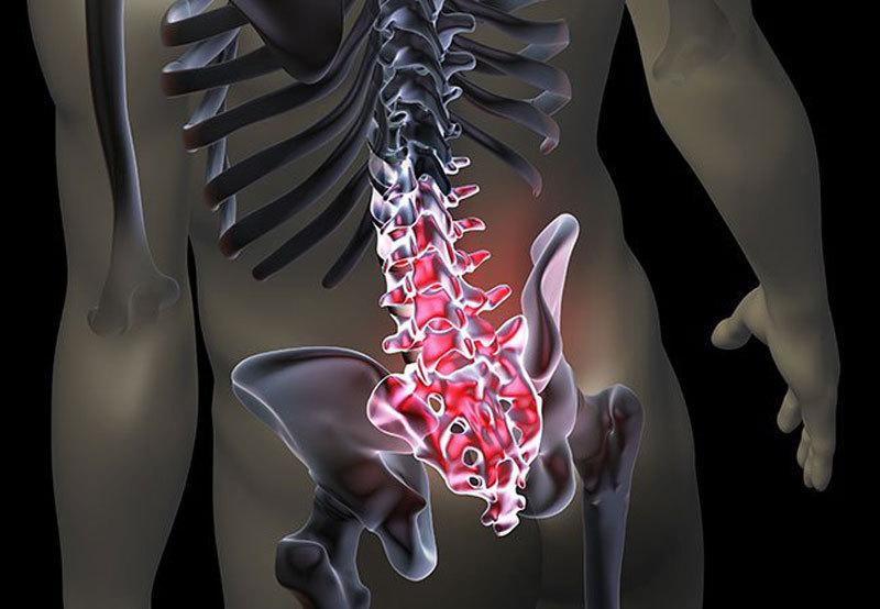Тазовый сегмент мышечного панциря: витальные страхи