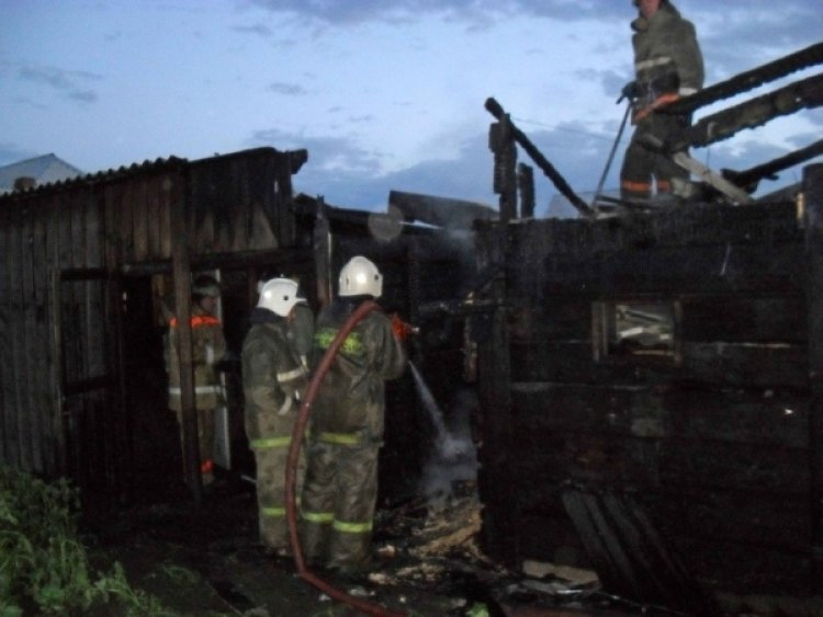 Пожар в Забайкалье уничтожил около 70 животноводческих хозяйств