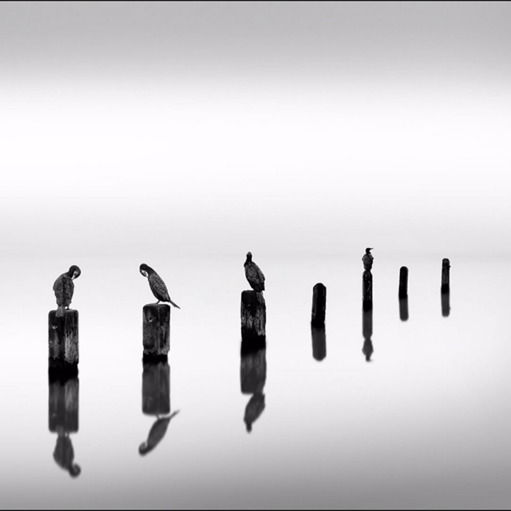 Чёрно-белые пейзажи, уходящие за пределы реальности. Фотограф Джордж Дигалакис 10