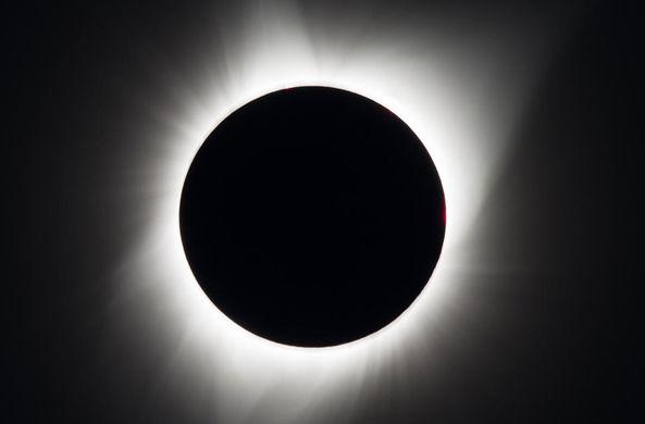 Ученые рассказали об эффекте солнечного затмения на природу