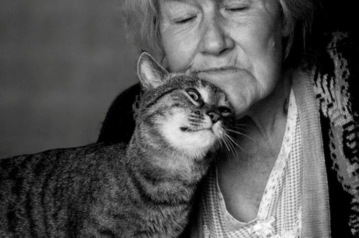 Смешная зарисовка про бабулю и спасение кота