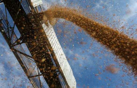 Закрытие Турции для экспортеров сельхозпродукции может стоить им$500млн