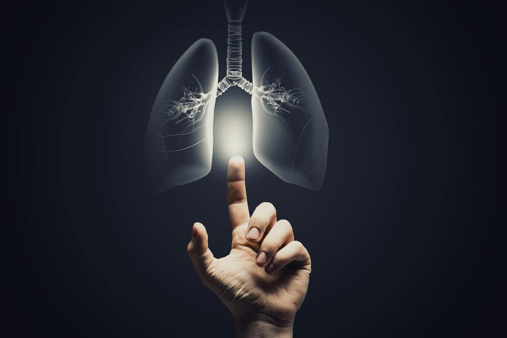Александр Чучалин: Многие болезни органов дыхания обусловлены экологией