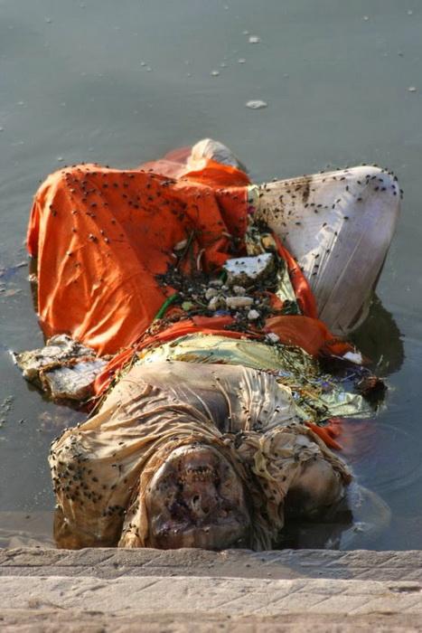 В Индии издавна принято хоронить умерших в реке Ганг.