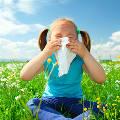 От аллергии защитят прививки