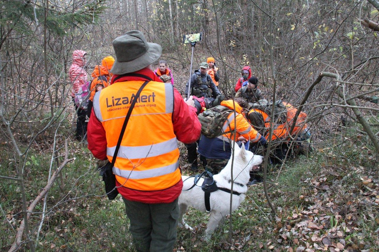 Герои нашего времени: добровольцы поискового отряда «Лиза Алерт» уже 8 лет спасают жизни в десятках регионов страны