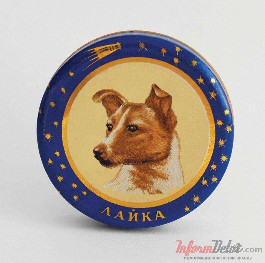 20 примеров товаров, с изображением советских собаконавтов, покоривших космос