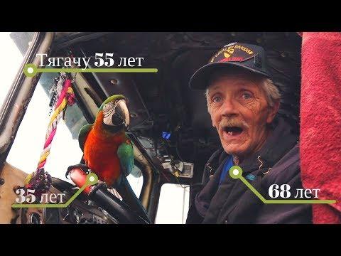 Старик-дальнобойщик с попугаем на старом траке