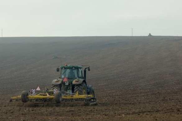 Было ваше — стало наше: МВФ посоветовал Украине отменить запрет на продажу земли