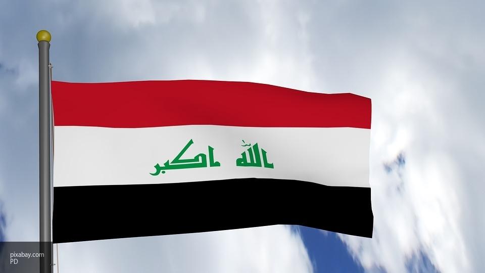 В Ираке дикие кабаны атаковали базу боевиков ИГ: три террориста уничтожены