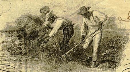 Рабы на купюрах Юга