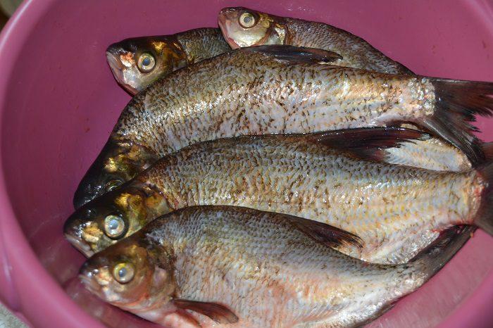 Вкусные котлеты из речной рыбы для заморозки