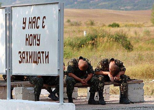 """Украинские """"эксперты"""" назвал…"""