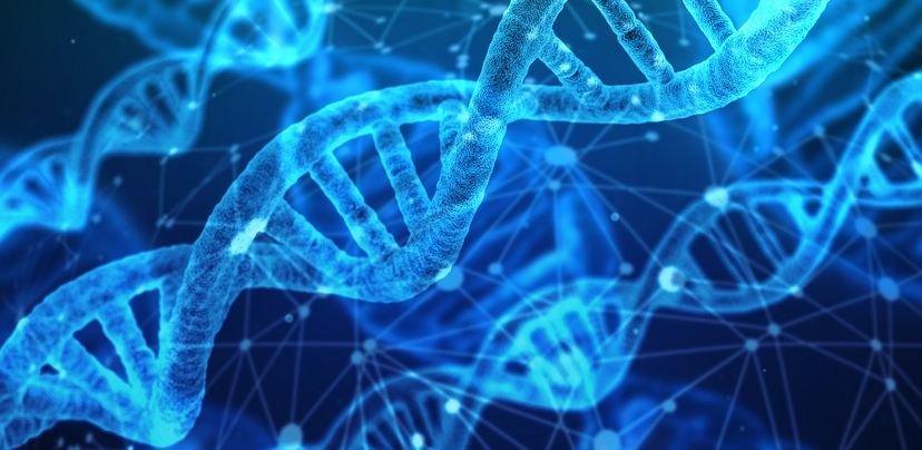 «Отпечатки пальцев» древних людей: ДНК поможет определить происхождение человека