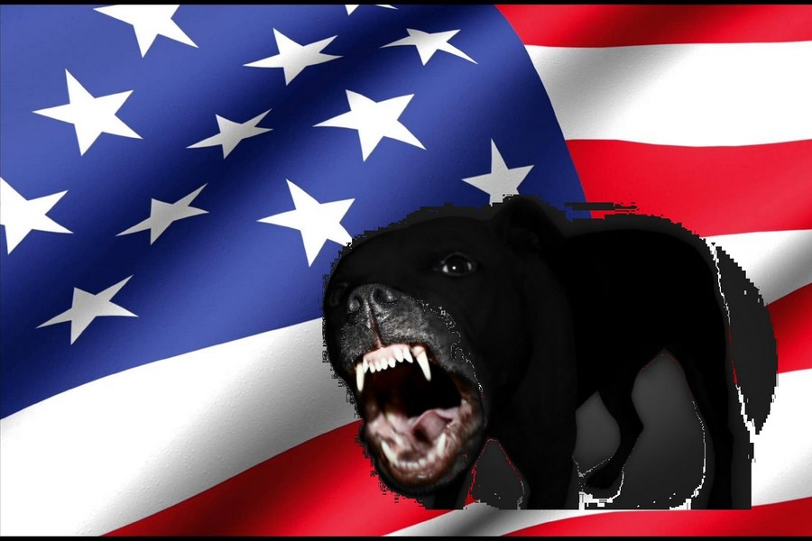 Эволюция США: от мирового жа…