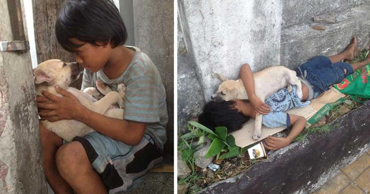 Мальчик взял с улицы дворняжку, чтобы не быть в одиночестве. Теперь их дружба трогает сердца тысяч людей