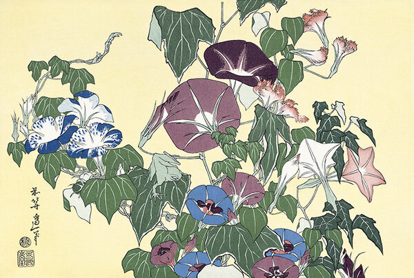 Ипомеи и древесная лягушка. Кацусика Хокусай, 1834
