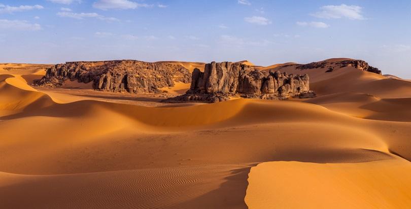 Археологи обнаружили в пустыне Сахара древние останки рыб