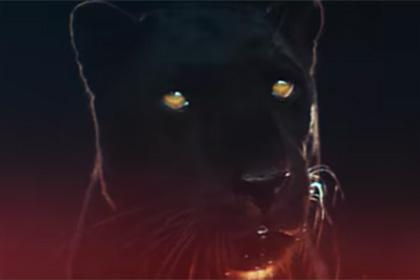 The Weeknd выпустил короткометражку в преддверии нового альбома